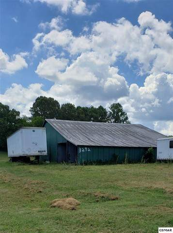 3292 Blue Springs Road, Strawberry Plains, TN 37871 (#229194) :: Jason White Team | Century 21 Four Seasons