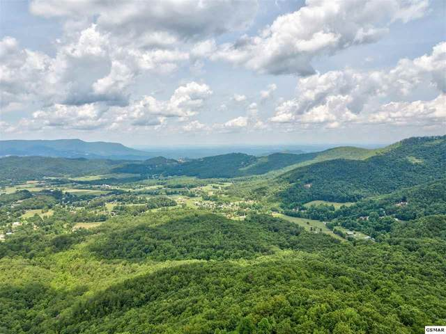 Tract 21 Cove Mountain Road, Sevierville, TN 37862 (#229205) :: The Terrell Team