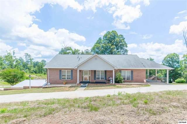 241 Harbor View Lane, Maryville, TN 37801 (#229214) :: Jason White Team   Century 21 Four Seasons