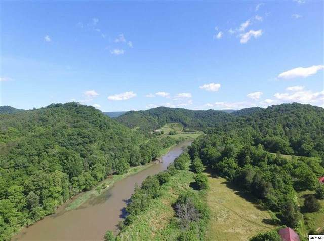 208.46 Acres Yellow Branch Road, Sneedville, TN 37869 (#229222) :: The Terrell Team