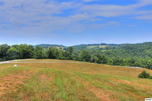 Lot 210 Jade Ln, New Tazewell, TN 37825 (#229238) :: Four Seasons Realty, Inc