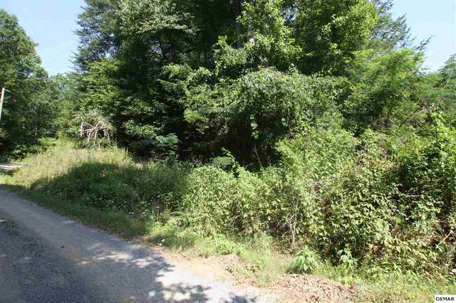 Lot 31 Shady Oaks Way, Sevierville, TN 37876 (#229266) :: Jason White Team | Century 21 Four Seasons
