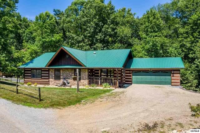 2561 Black Bear Ln, Sevierville, TN 37876 (#229272) :: Four Seasons Realty, Inc