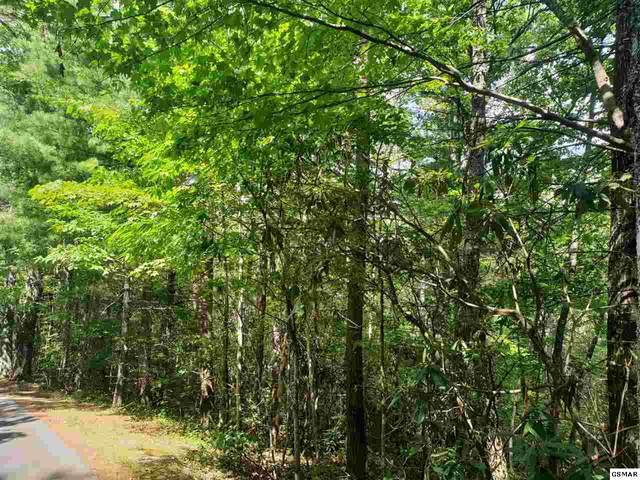 Lot 15 Stonegate Way, Townsend, TN 37882 (#229314) :: Four Seasons Realty, Inc