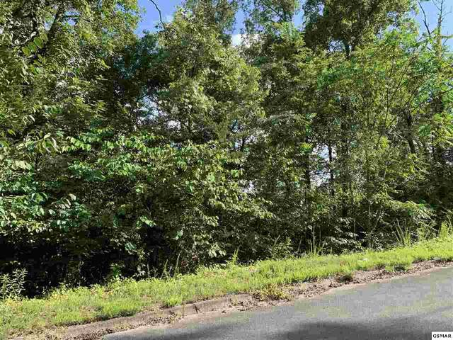 LOT 55 Oak Lake Dr, Sevierville, TN 37876 (#229325) :: Tennessee Elite Realty