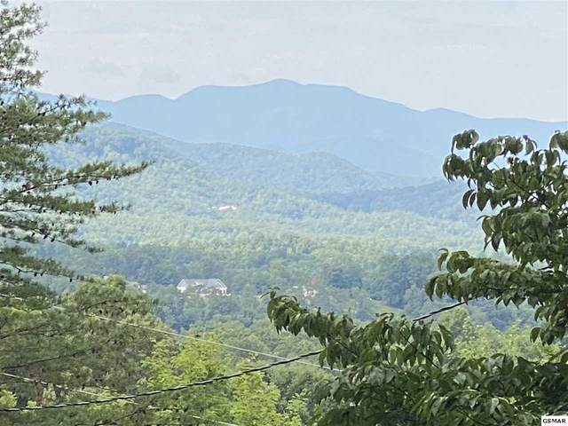 Lot 13 Pamela Circle, Sevierville, TN 37682 (#229335) :: Colonial Real Estate