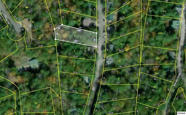 Lot 5 Cutter Gap Road, Townsend, TN 37882 (#229352) :: Four Seasons Realty, Inc