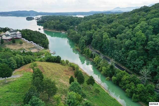 Lot 14 Harbor Point Dr, Sevierville, TN 37876 (#229356) :: Jason White Team | Century 21 Legacy