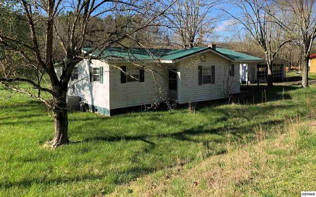 1454 Wears Valley Road, Pigeon Forge, TN 37863 (#229362) :: The Terrell Team