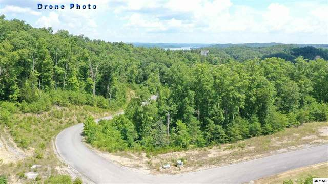 Lot 21 Bay View Point, Sevierville, TN 37876 (#229368) :: Four Seasons Realty, Inc