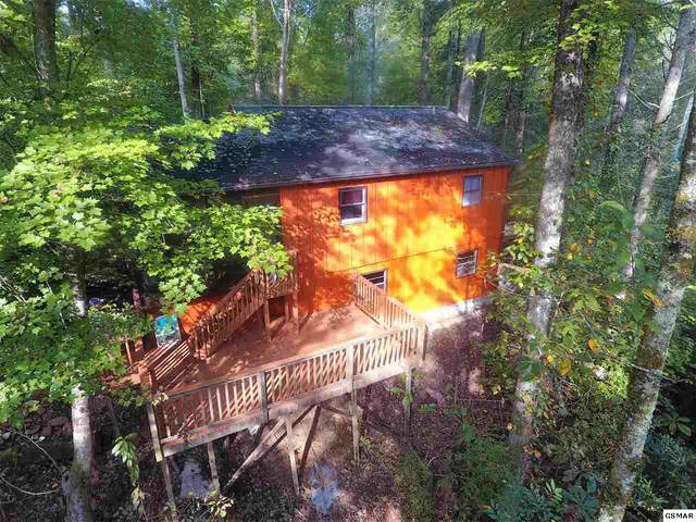 4591 Houge Way, Cosby, TN 37722 (#229376) :: Four Seasons Realty, Inc