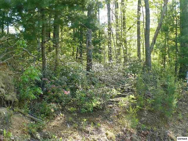 Lot #89 Bird View Lane, Sevierville, TN 37862 (#229386) :: Four Seasons Realty, Inc