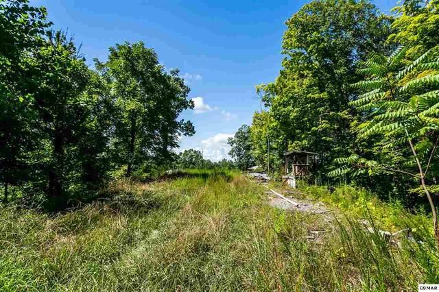 2935 Retreat Way, Sevierville, TN 37876 (#229425) :: Four Seasons Realty, Inc