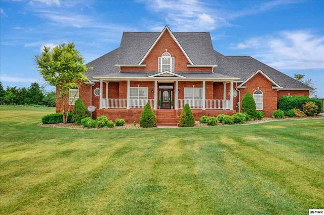 1615 Graves Rd, Strawberry Plains, TN 37871 (#229427) :: Four Seasons Realty, Inc