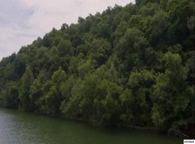16.7 Acres Long Beard Lane, Tazewell, TN 37879 (#229441) :: Jason White Team | Century 21 Legacy