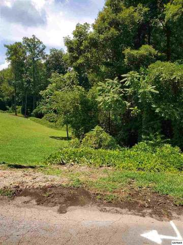 Lot 7 Woodland Dr, New Market, TN 37820 (#229449) :: The Terrell Team