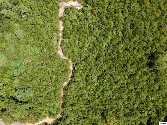 4.3 Acres Sharp Road, Sevierville, TN 37876 (#229463) :: The Terrell Team