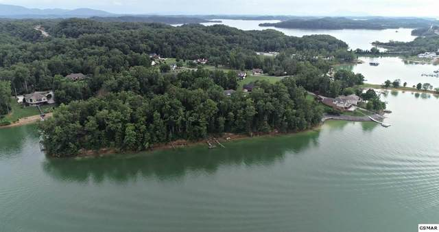 Lot 23 David Swann Drive, Dandridge, TN 37725 (#229482) :: Century 21 Legacy
