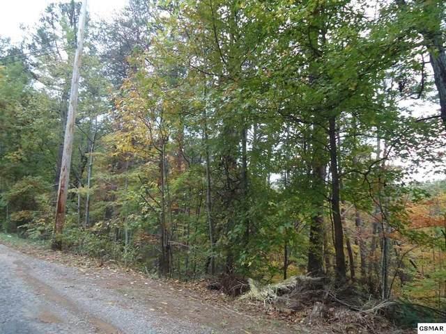 Par 129 Nebo Mountain Rd, Walland, TN 37886 (#229494) :: Prime Mountain Properties