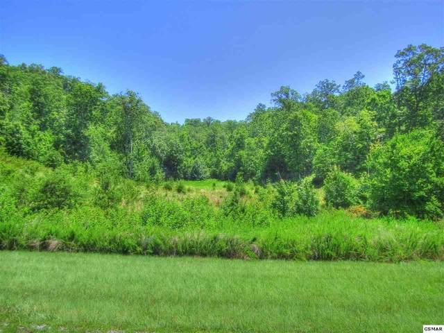 Lot 398 W Mountain Dr, Rockwood, TN 27854 (#229505) :: Four Seasons Realty, Inc