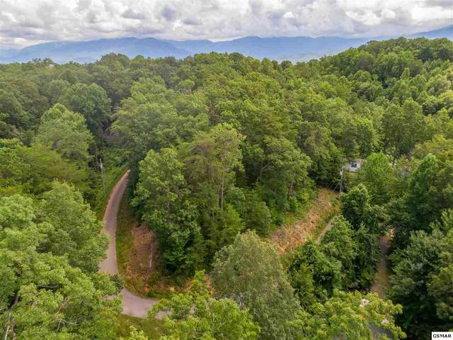 S Boogertown Rd, Sevierville, TN 37876 (#229508) :: Colonial Real Estate