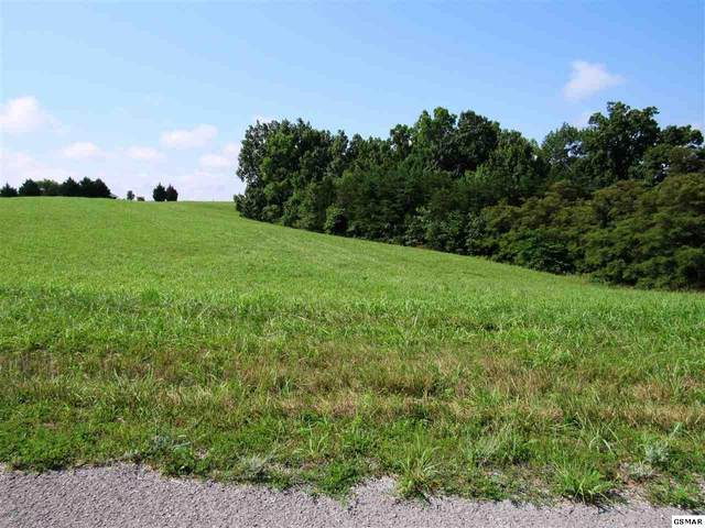 Lot 278 Alabaster Ct, New Tazewell, TN 37825 (#229554) :: Four Seasons Realty, Inc
