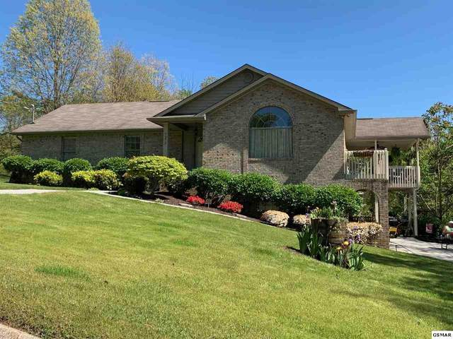 7373 Circle Point Drive, Talbott, TN 37877 (#229556) :: The Terrell Team