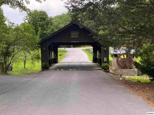 Lot 90 Owls Cove Way, Sevierville, TN 37862 (#229568) :: The Terrell Team