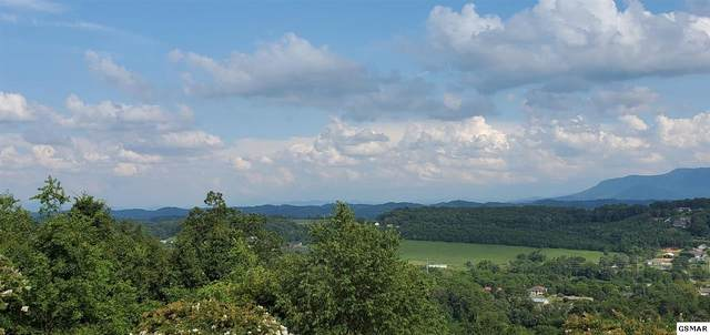 Lot 10 Falcon Crest Dr, Seymour, TN 37865 (#229581) :: Billy Houston Group