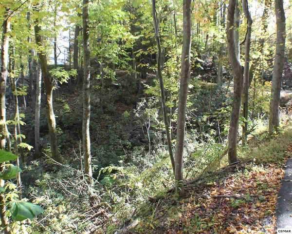 Lot 20R St Moritz Dr, Gatlinburg, TN 37737 (#229582) :: Four Seasons Realty, Inc
