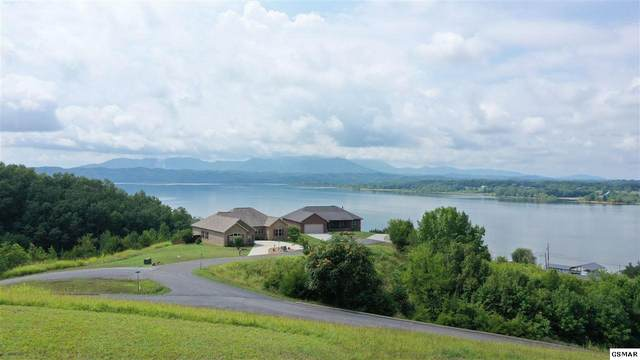 Lot 49 Ivy Way, Newport, TN 37821 (#229588) :: Four Seasons Realty, Inc