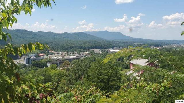 Lots 11-12 Laurelwood Dr, Pigeon Forge, TN 37863 (#229593) :: The Terrell Team