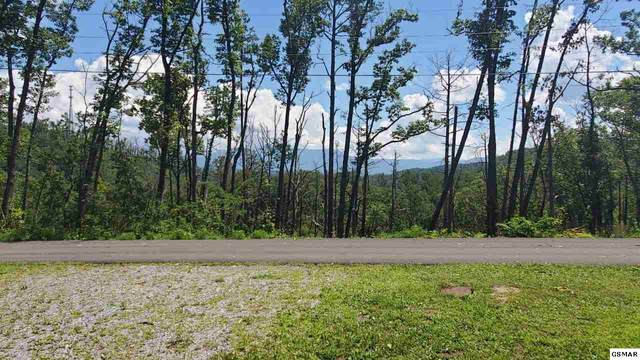Lots 13-14 Laurelwood Dr, Pigeon Forge, TN 37863 (#229594) :: The Terrell Team