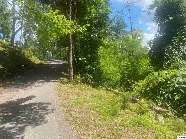 Lot 4 Forest Springs Drive, Gatlinburg, TN 37738 (#229601) :: Colonial Real Estate