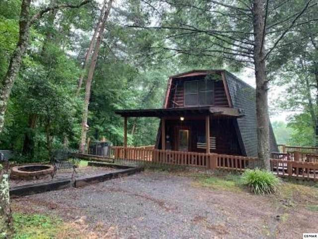 1020 Ski View Ln, Sevierville, TN 37876 (#229605) :: Four Seasons Realty, Inc