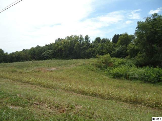 Lot 3 & 4 Winfield Dunn Parkway Lot 22 Ironwood, Sevierville, TN 37862 (#229609) :: Colonial Real Estate