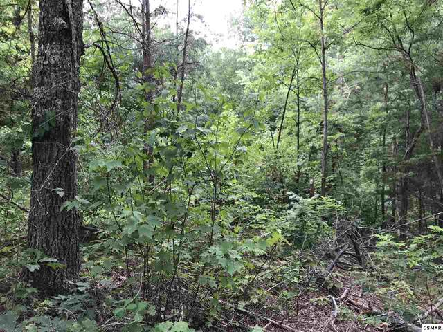 Lot 25 Ridgeview Drive, Sevierville, TN 37876 (#229611) :: Colonial Real Estate