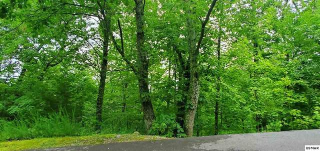 Lot 6 Majestic View Way Cove Mountain L, Sevierville, TN 37876 (#229634) :: The Terrell Team