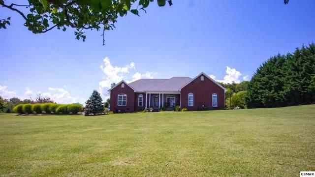 3460 Bentwood Drive, Kodak, TN 37764 (#229645) :: Colonial Real Estate