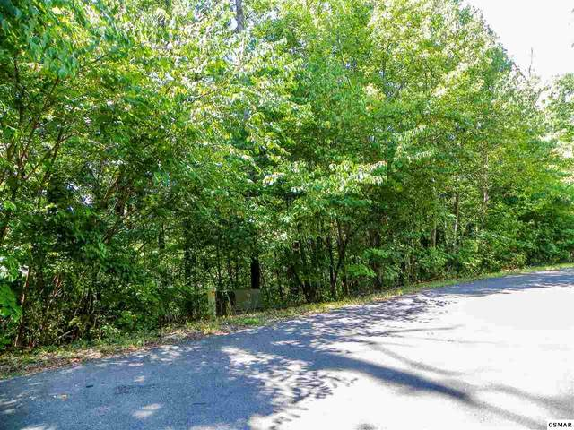 Lot #34 Stevia Way, Cosby, TN 37722 (#229655) :: Colonial Real Estate