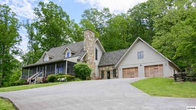 1150 Camellia Road, Newport, TN 37821 (#229659) :: Four Seasons Realty, Inc
