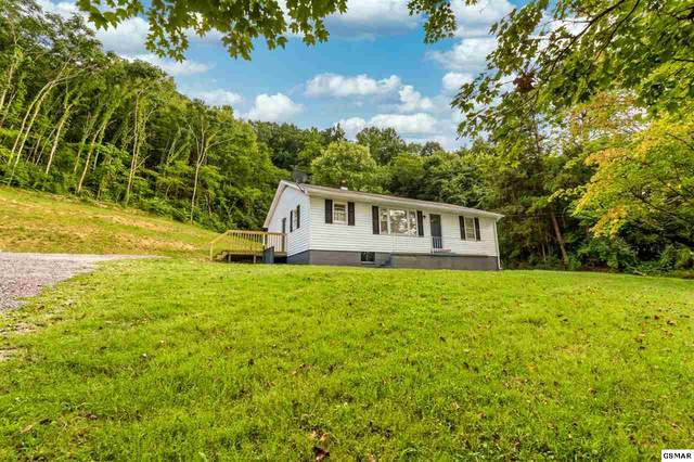 4504 Brown Gap Road, Knoxville, TN 37918 (#229662) :: The Terrell Team