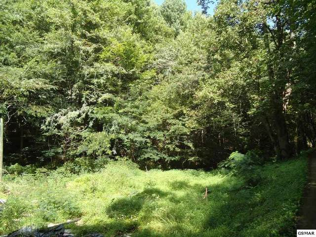 Tract 1 & 2 Laurel Creek Road Part Of Parcel , Sevierville, TN 37876 (#229707) :: The Terrell Team