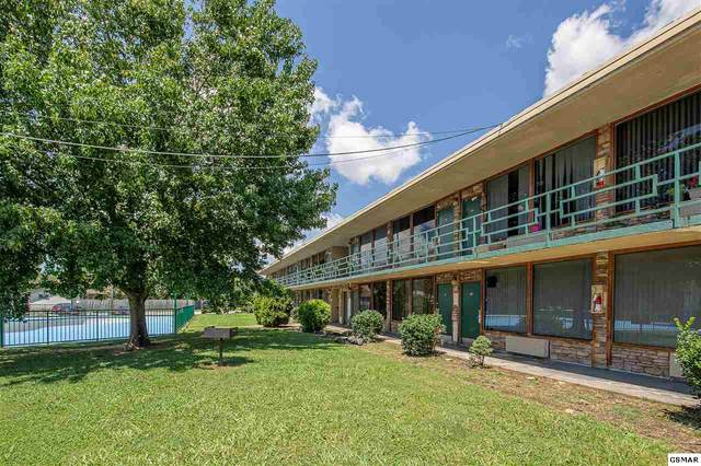 4025 Parkway Unit 248, Pigeon Forge, TN 37863 (#229728) :: The Terrell Team
