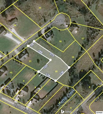 Sybill Lee Lane Lot 20, Sevierville, TN 37876 (#229739) :: Colonial Real Estate