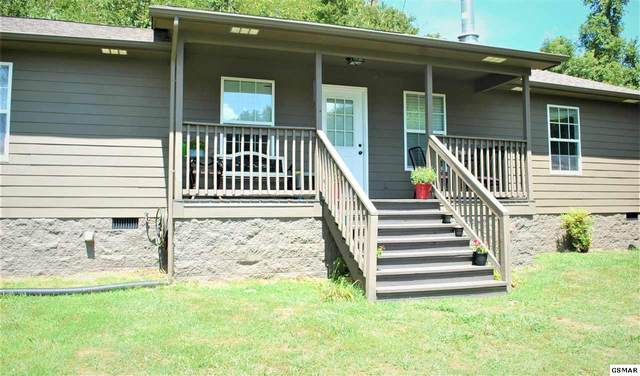 393 Lane Hollow Rd, Sevierville, TN 37876 (#229740) :: Four Seasons Realty, Inc