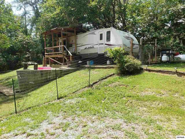 549 Allensville Acres Rd, Sevierville, TN 37876 (#229743) :: Four Seasons Realty, Inc