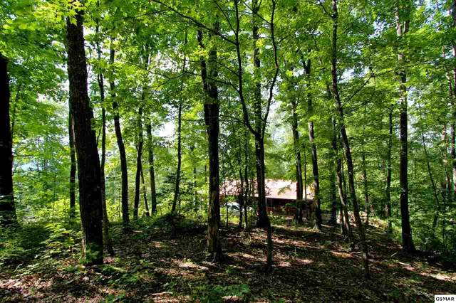 LOT 18 Grand Country Way, Cosby, TN 37722 (#229750) :: Jason White Team | Century 21 Legacy