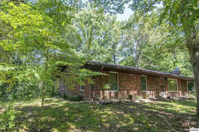 2552 Highland Park Drive, Pigeon Forge, TN 37863 (#229763) :: Billy Houston Group