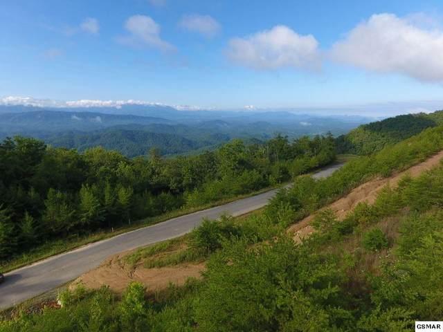 Lot 63 Mountain Ash Way, Sevierville, TN  (#229773) :: Four Seasons Realty, Inc